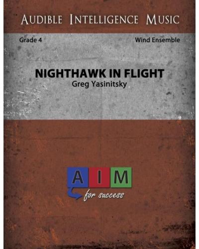 we-yasinitsky---nighthawk-in-flight